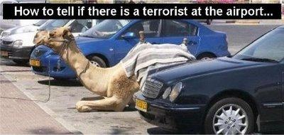 Terrorist Spotting